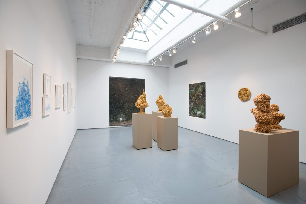 logan_russell_hypernatural_julie-saul-gallery
