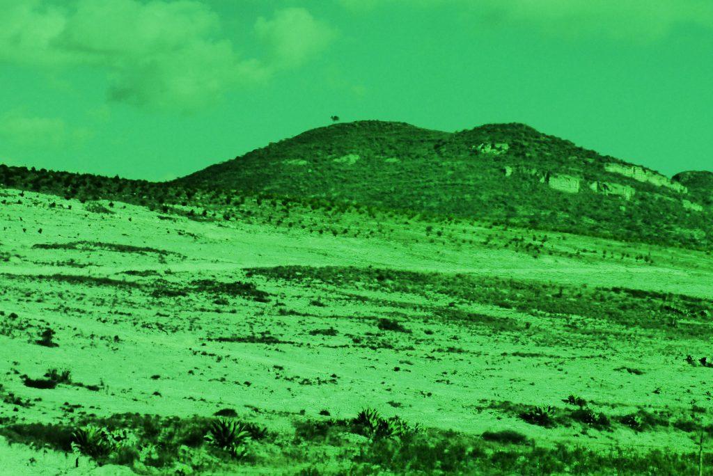 green_videostill_kgardea-image2