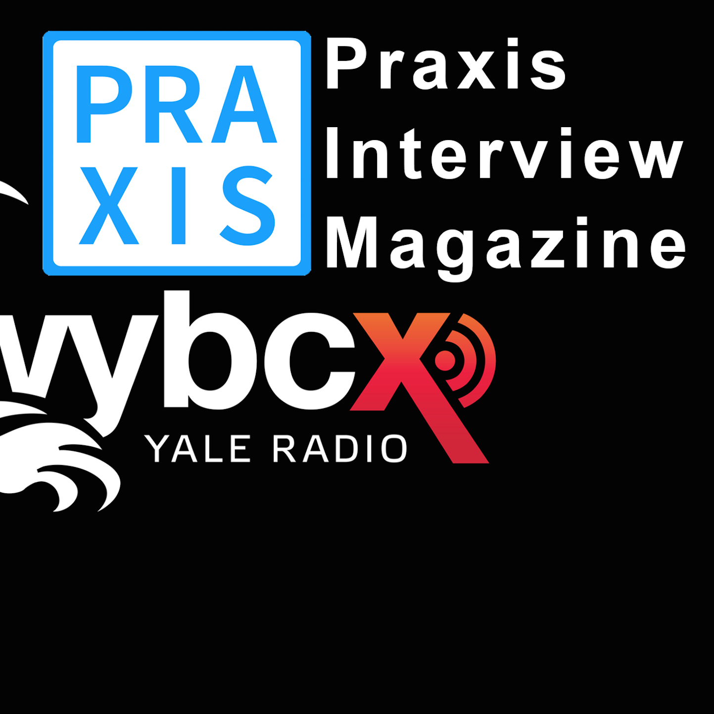 Interviews from Yale Radio / Artists, Curators and more